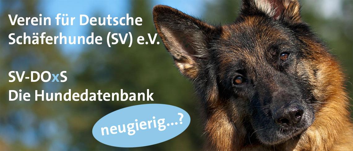 SV-DOxS - Verein für Deutsche Schäferhunde (SV) e.V.