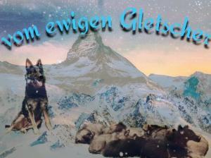 Zuchtstätte vom ewigen Gletscher Bild