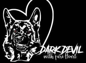 Zuchtstätte Dark Devil with Pure Heart  Bild